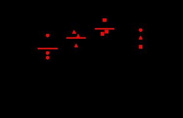 RSVC Rat Model